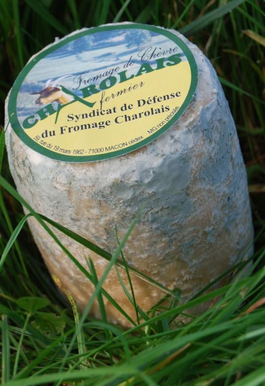 Fromage De Ch 232 Vre Charolais Les Aop Gourmandes De Sa 244 Ne