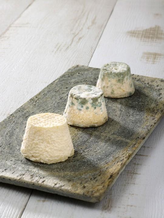fromage-chevre-maconnais